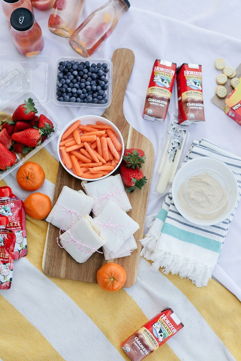 How To Plan the Perfect Picnic - A Kid Friendly Survival Guide