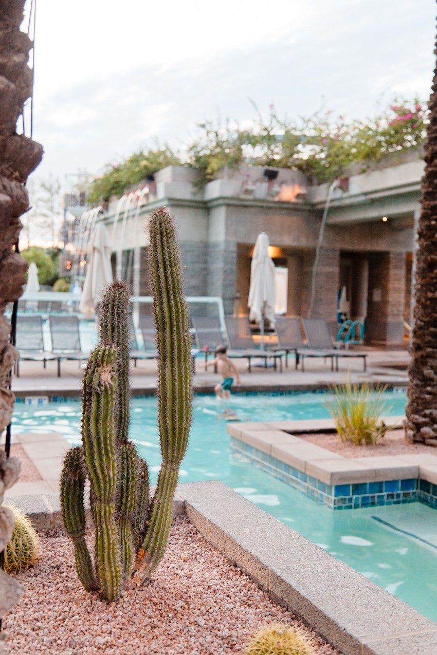 The Best Things to Do in Scottsdale, AZ with your Family. The best places to stay, eat and play!