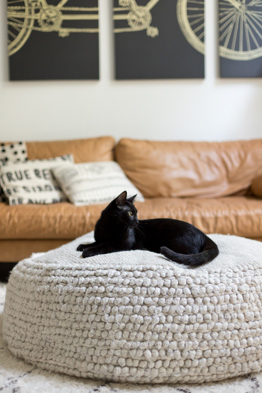 5 Essential Things for the Best Kitten Care from top US lifestyle blogger Tabitha Blue of Fresh Mommy Blog! I hate cat litter! Here's why the Litter Robot is amazing and our new kitten care best friend. | How to Train Your Cat to Use the Litter Box by popular Tampa life and style blog, Fresh Mommy: image of a black cat sitting on a ottoman.