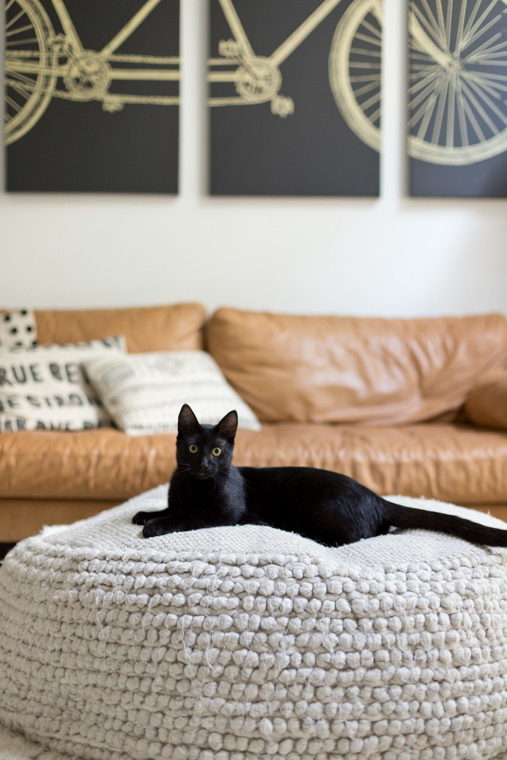 Kitten Care Tips: 5 Essentials you Need to Raise a Cat by popular lifestyel blogger Tabitha Blue of Fresh Mommy Blog: image of black cat sitting on a cream woven floor ottoman in front of a camel colored leather couch with mud cloth throw pillows.