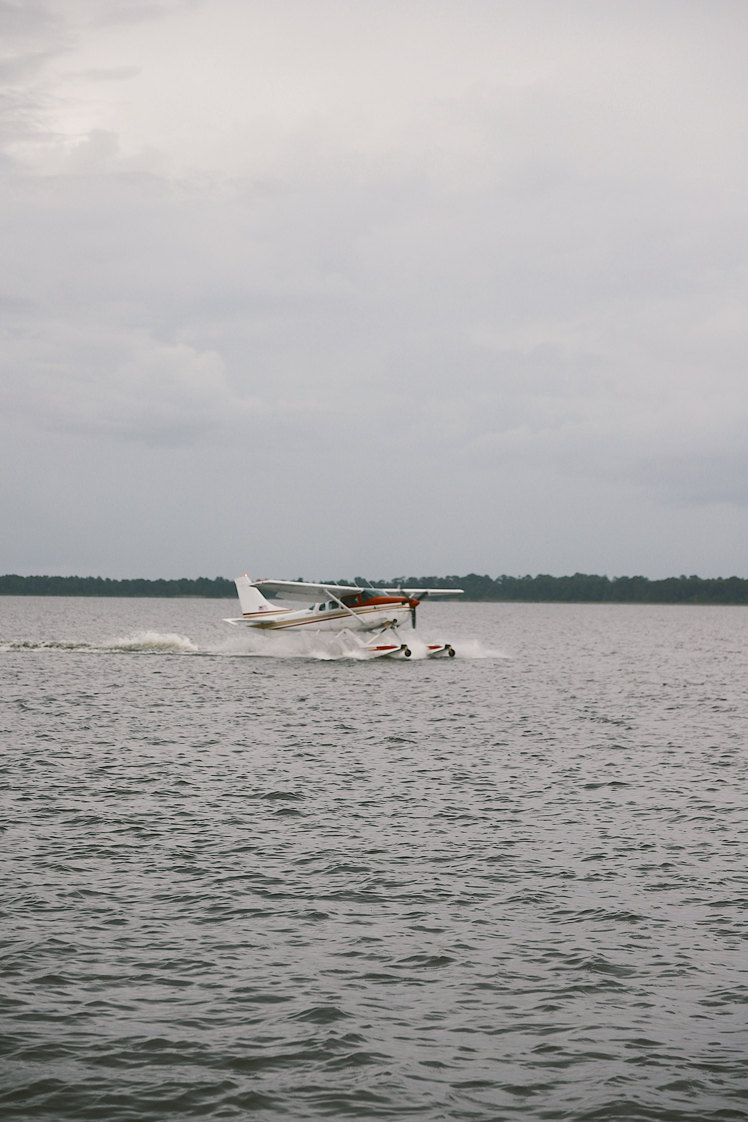 Spectacular Lake County, Florida Staycation Ideas for the Family!   Lake County by popular Florida blog, Fresh Mommy Blog: image of a sea plane landing on the water.