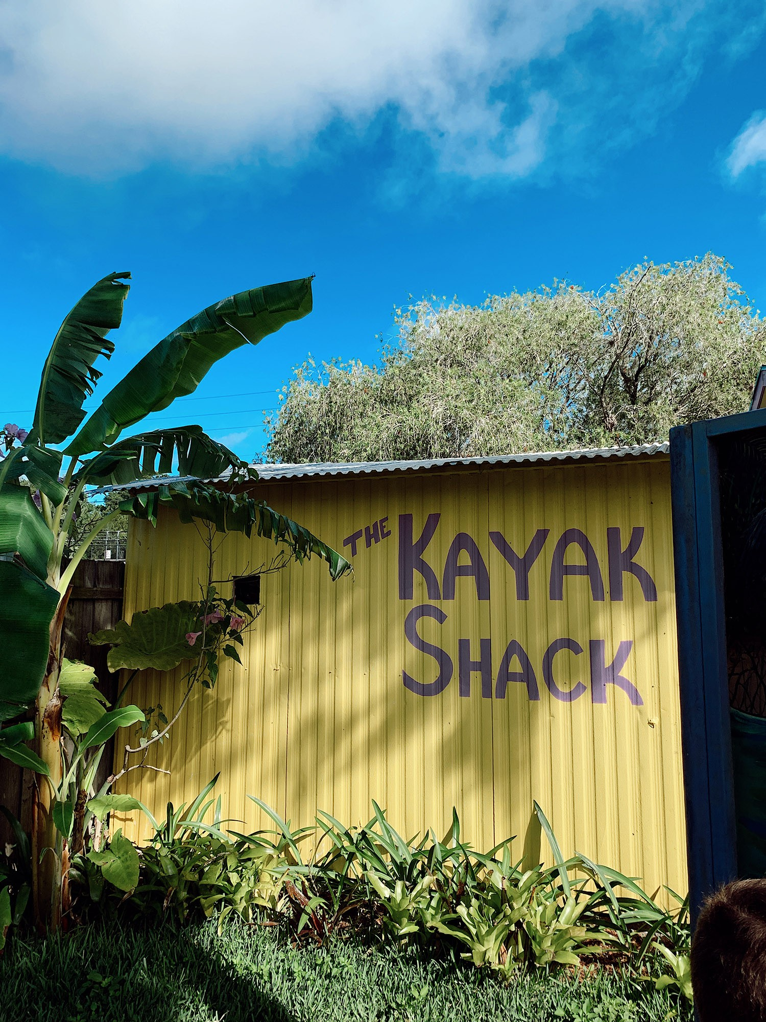 Tips for an Amazing Weeki Wachee Kayaking Florida Staycation. Visit Florida Travel ideas from top lifestyle blogger Tabitha Blue of Fresh Mommy Blog.   Weeki Wachee Kayaking by popular Florida blog, Fresh Mommy Blog: image of The Kayak Shack.