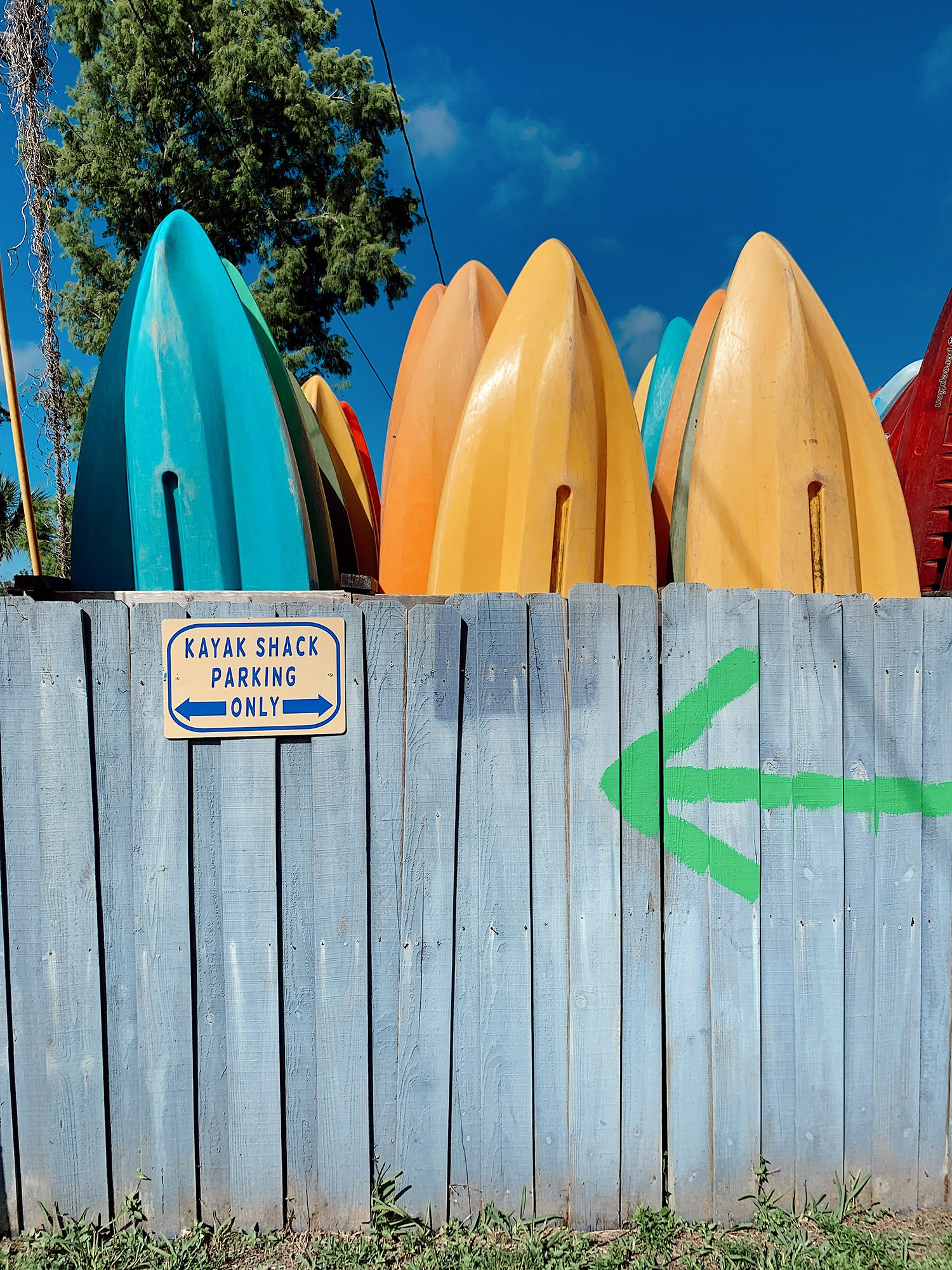 Tips for an Amazing Weeki Wachee Kayaking Florida Staycation. Visit Florida Travel ideas from top lifestyle blogger Tabitha Blue of Fresh Mommy Blog.   Weeki Wachee Kayaking by popular Florida blog, Fresh Mommy Blog: image of kayaks leaning up against a wooden fence.