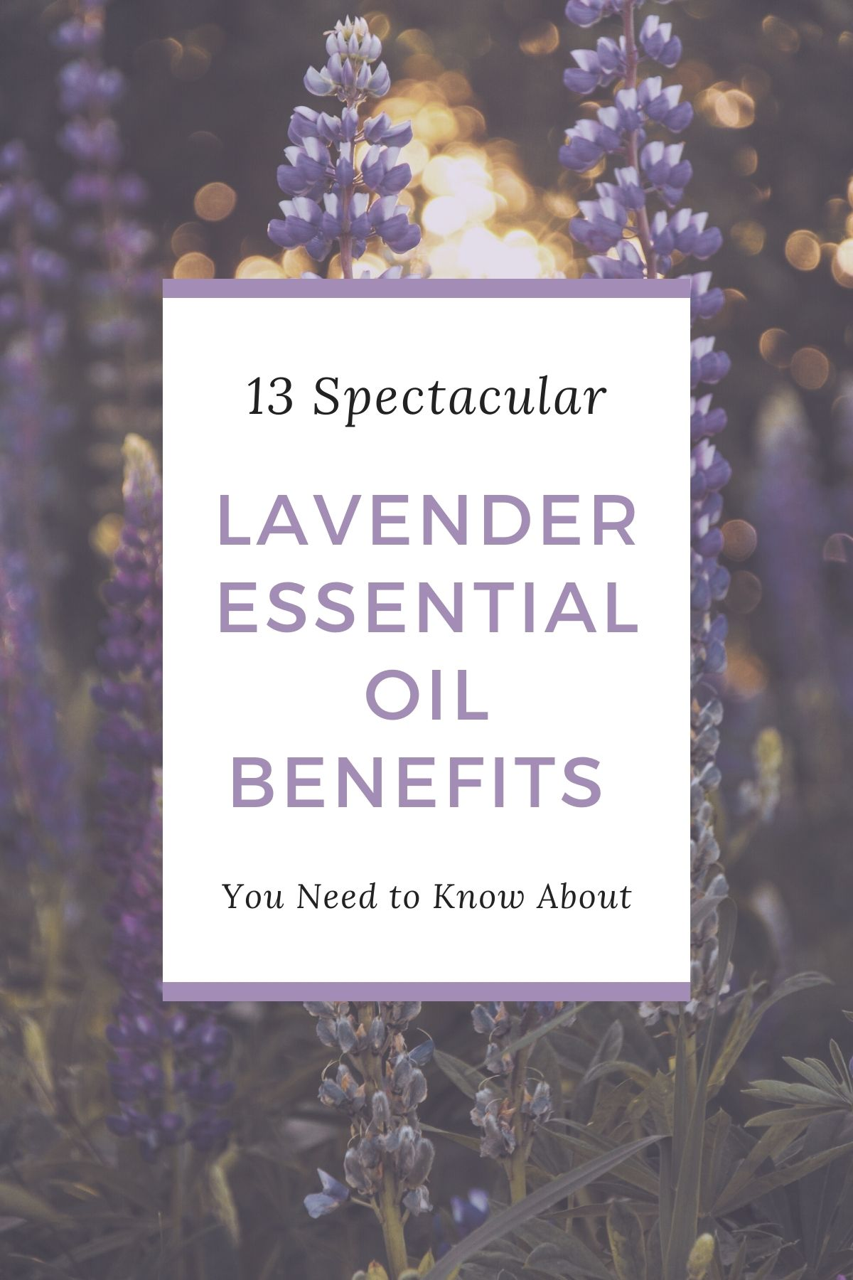 13 Spectacular Lavender Essential Oil Benefits You Need to Know About from Top US Lifestyle Blogger Tabitha Blue of Fresh Mommy Blog.   Lavender Essential Oil by popular Florida lifestyle blog, Fresh Mommy Blog: Pinterest image of Spark Naturals lavender essential oil benefits.