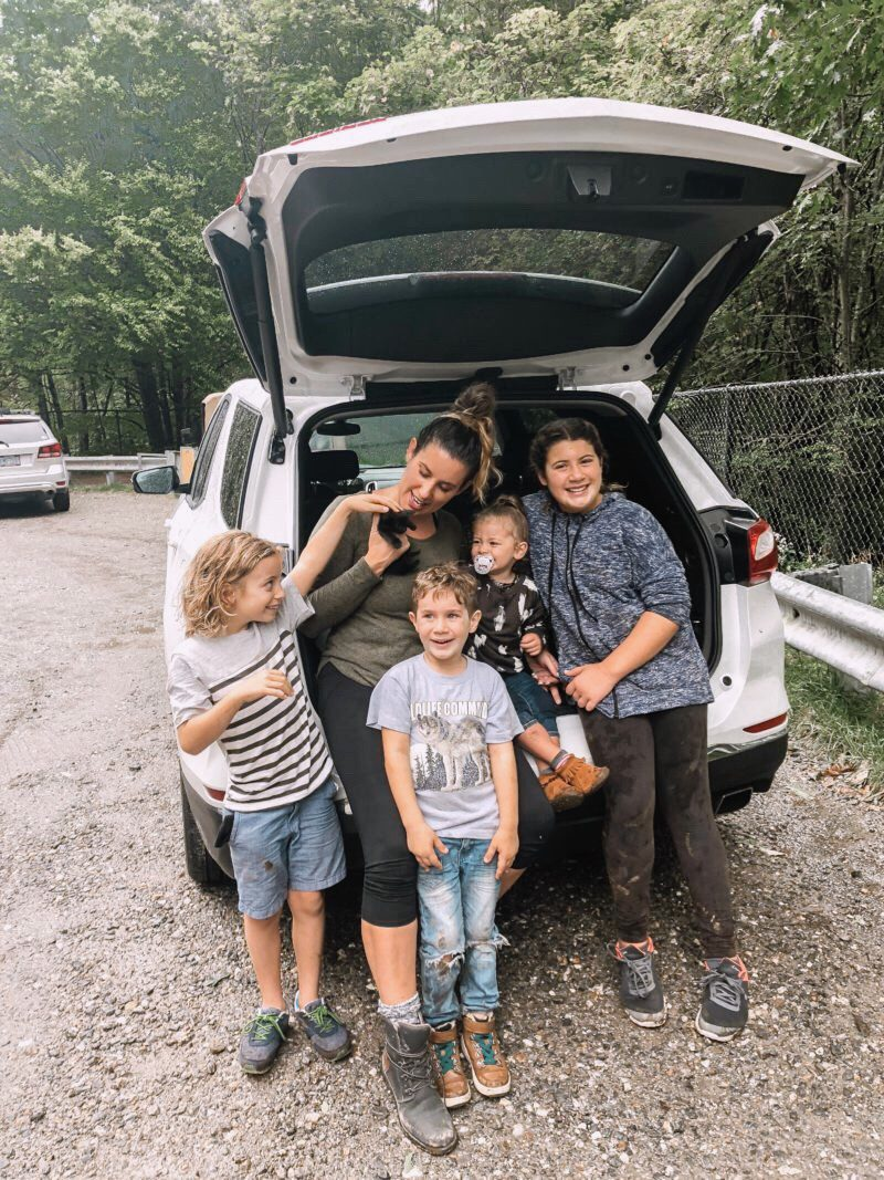 7 Spectacular Must-Know Tips for Raising a Healthy Cat - Our rescue kitten adoption story | Solid Gold by popular Florida lifestyle blog, Fresh Mommy Blog: image of a mom and her kids holding a black kitten in the back of their car.