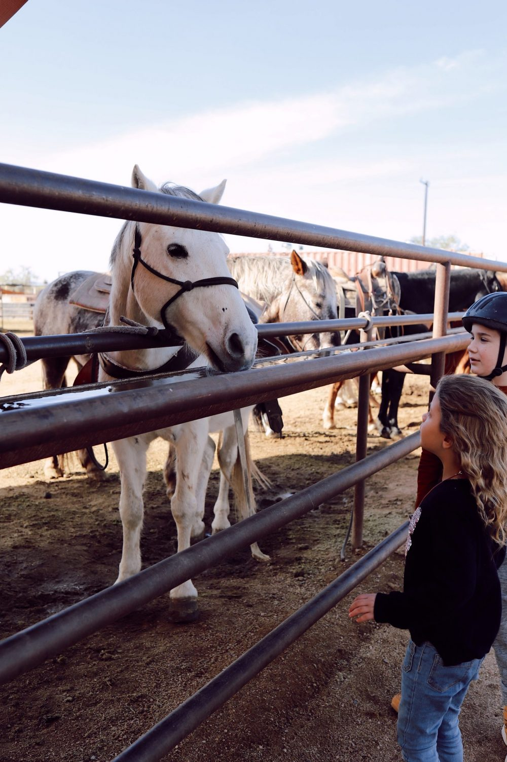 One of the Best Secret Winter Sun Destinations, Scottsdale Arizona. Horseback riding in the desert and family-friendly activities at MacDonald's Ranch. |Guide by popular Florida travel blog, Fresh Mommy Blog: image of two young kids looking at horses.