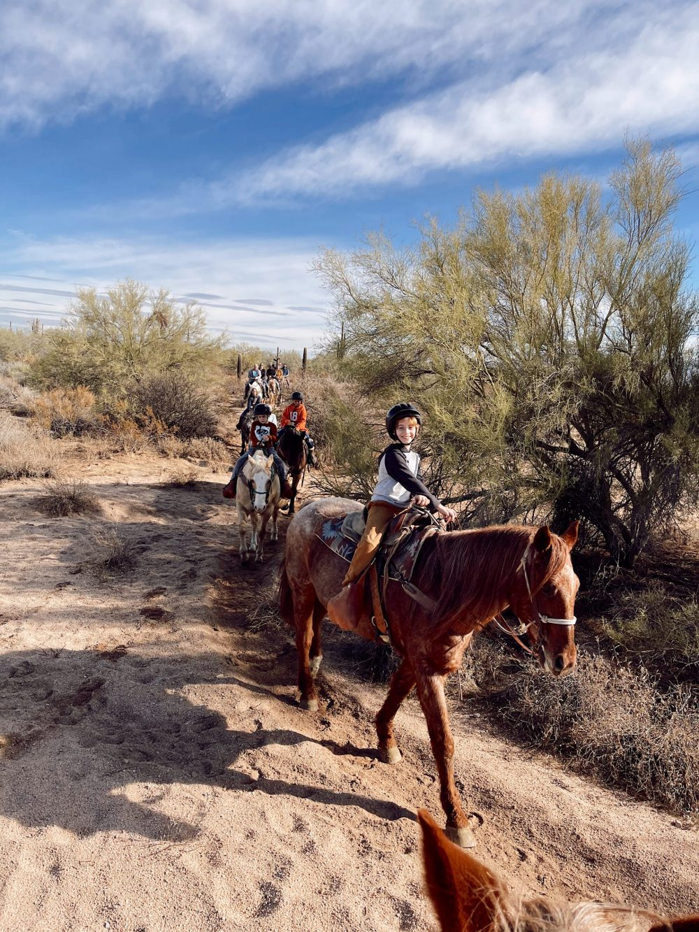 One of the Best Secret Winter Sun Destinations, Scottsdale Arizona. Horseback riding in the desert and family-friendly activities at MacDonald's Ranch. |Guide by popular Florida travel blog, Fresh Mommy Blog: image of a group of people riding horses.