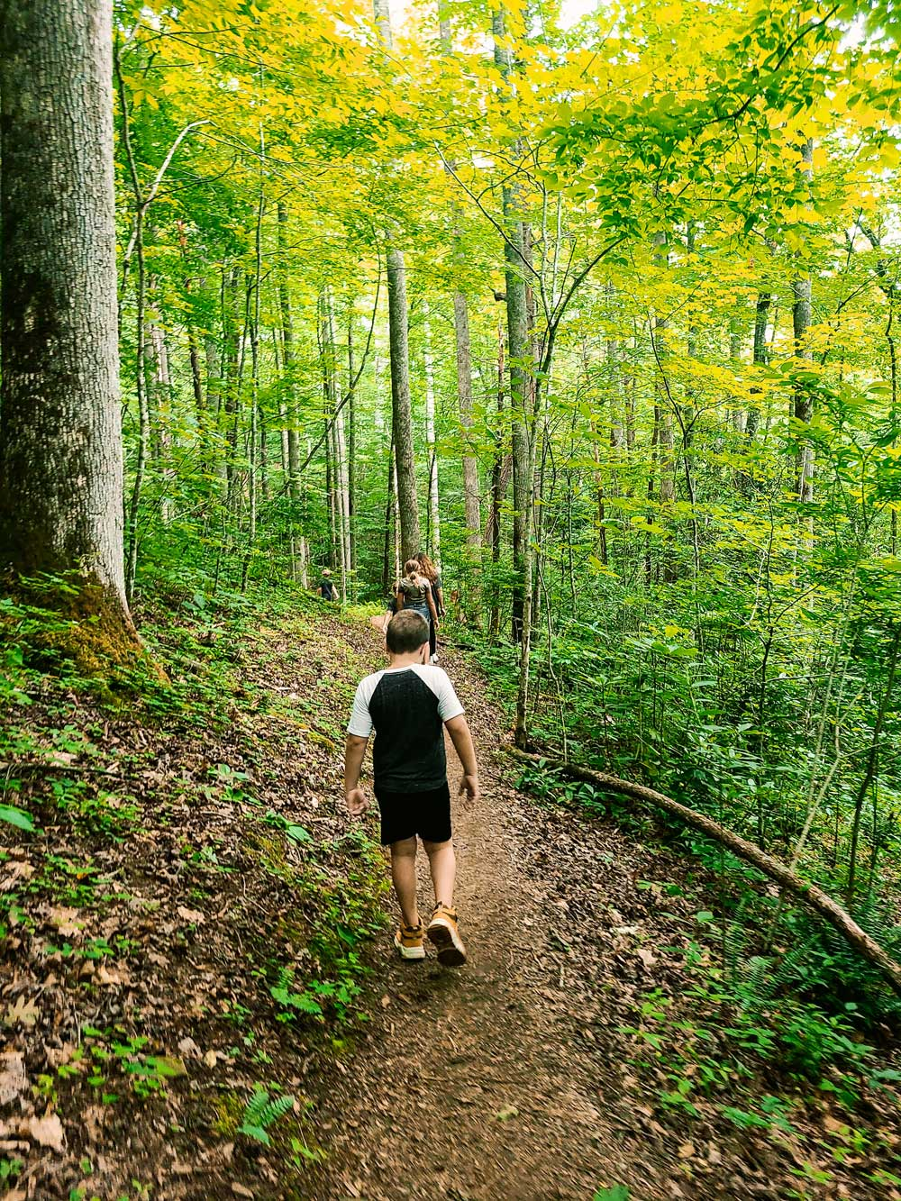 Best Things to Do in Bryson City NC with Kids   Things to do in Bryson City NC by popular Florida travel blog, Fresh Mommy Blog: image of a family hiking on a dirt trail.